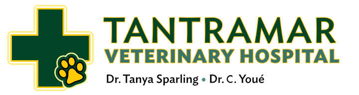Tantramar Veterinary Hospital
